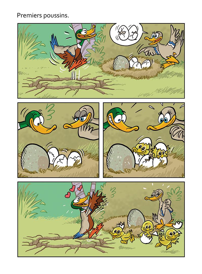 Extrait n°2 de la bd Le vilain petit canard par Curd Ridel