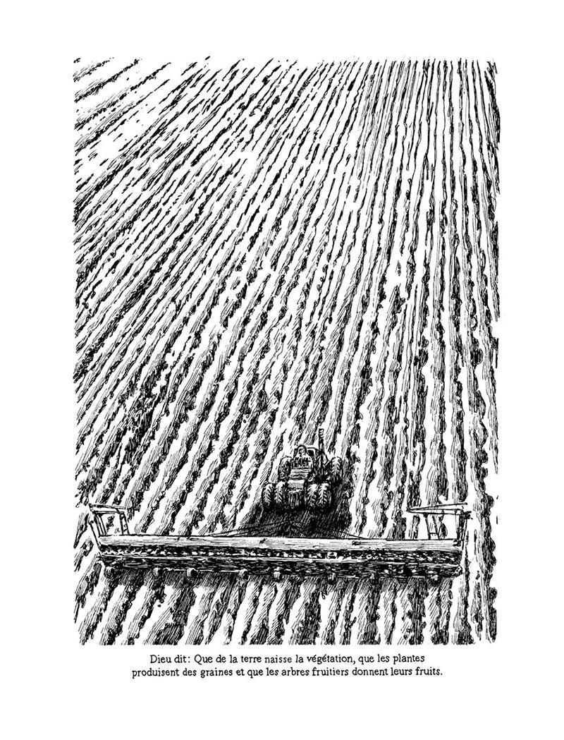 Extrait n°5 de la bd Le Livre par Nicolas Arispe