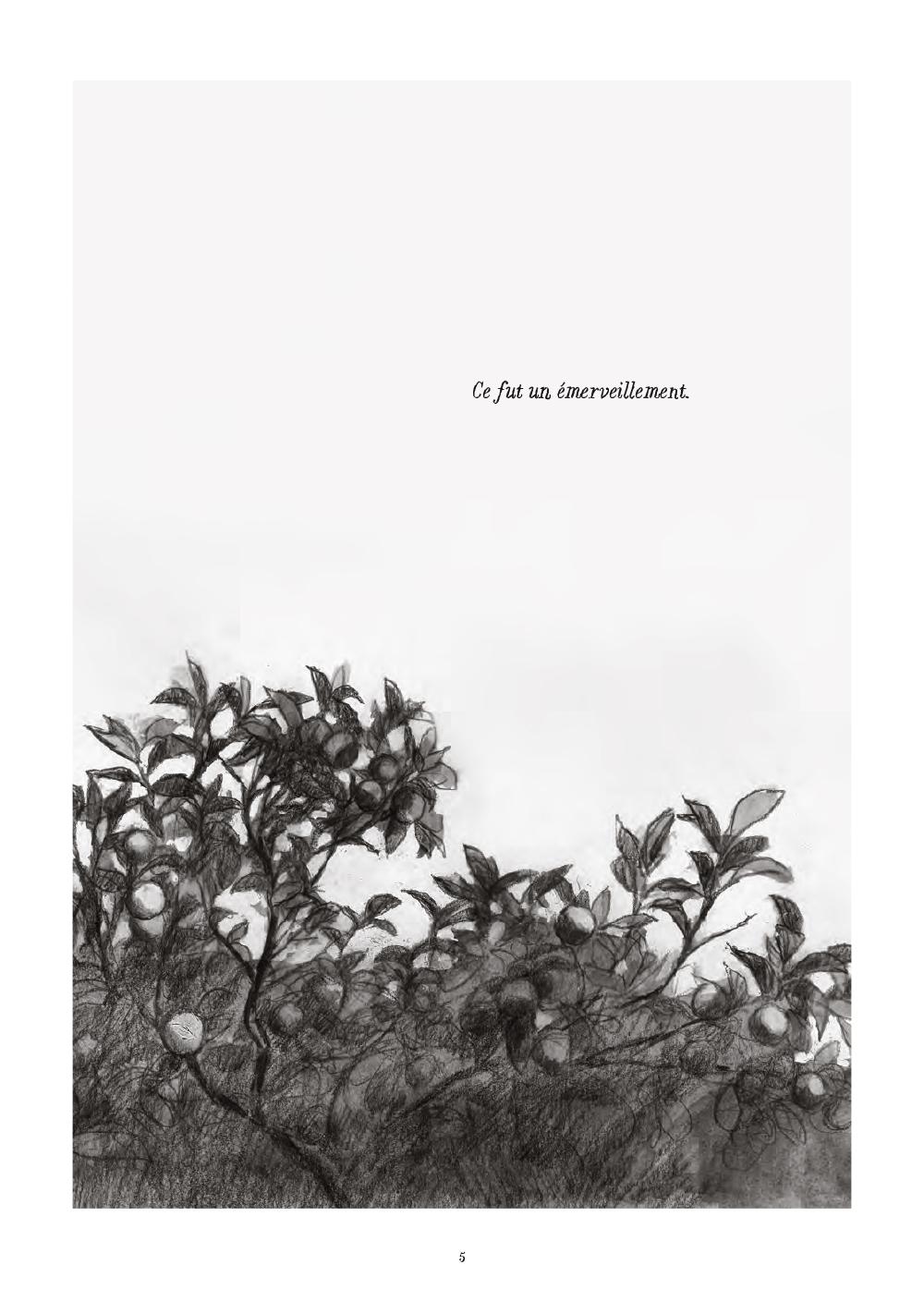 Extrait n°1 de la bd Soleil brûlant en Algérie par Alexandre Tikhomiroff
