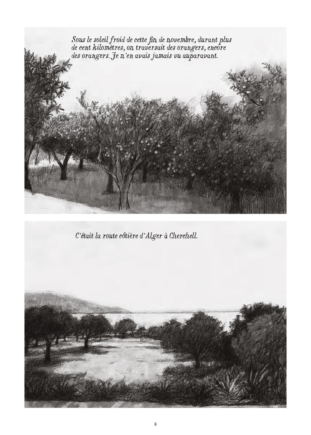 Extrait n°2 de la bd Soleil brûlant en Algérie par Alexandre Tikhomiroff