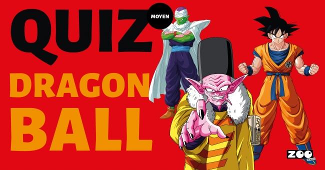 Quand nous parlons manga, nous sommes obligés de parler de la référence du genre: Dragon Ball. Kaméhaméha et Super Sayan ne sont pas des mots inconnus pour vous ? Alors, comme Goku, prouvez votre valeur avec ZOO.