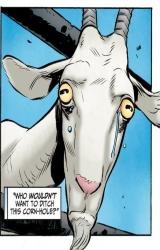avatar de Trolldejardin