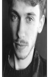 avatar de l'auteur Vincent Perriot